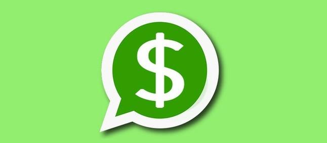 Novo recurso chegando! WhatsApp vai permitir transferências de dinheiro no Brasil em breve - TudoCelular.com