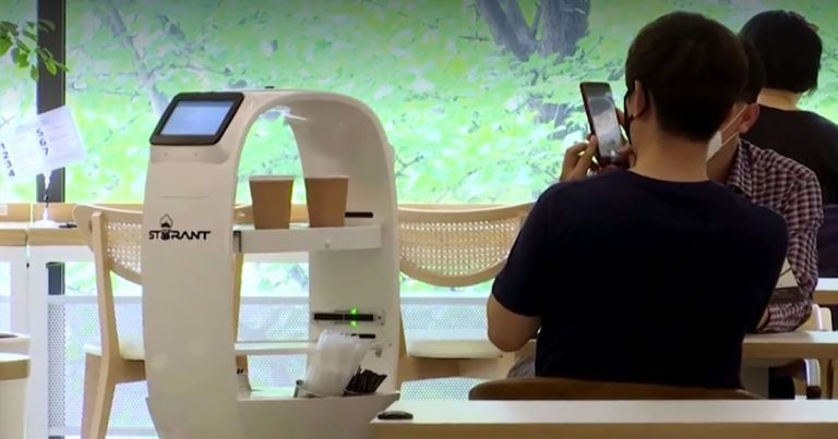 Bar hires robot to serve customers and maintain social distance in Korea ...