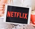O que há de novo no Netflix: descubra o que acontece com o gato