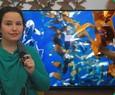 TV LG OLED 55CX: